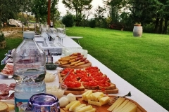 Tentula-food